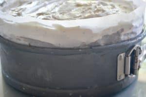 Easy Ice Cream Cake Recipe