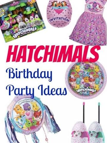 Hatchimals birthday party ideas