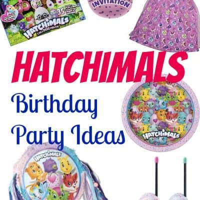 Hatchimals Birthday Party Ideas