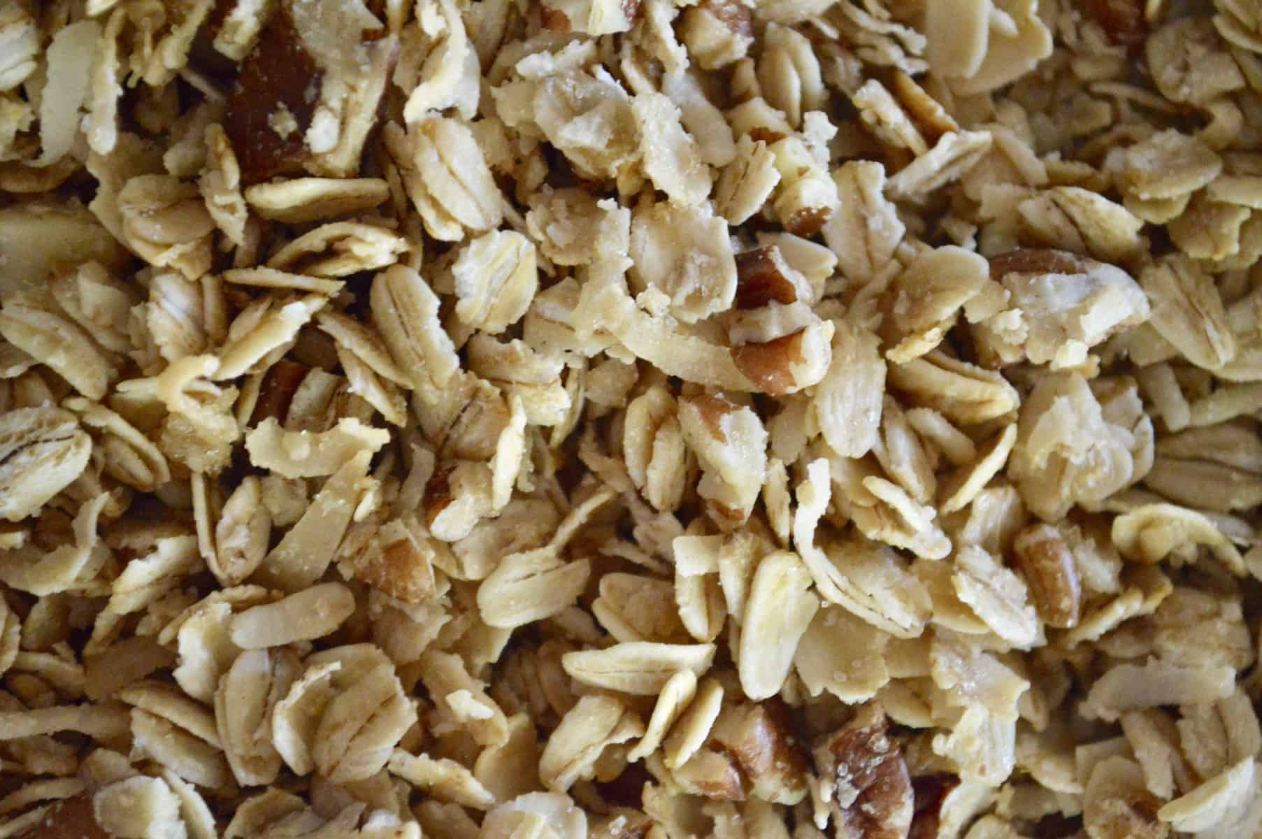 coconut pecan granola close up photo