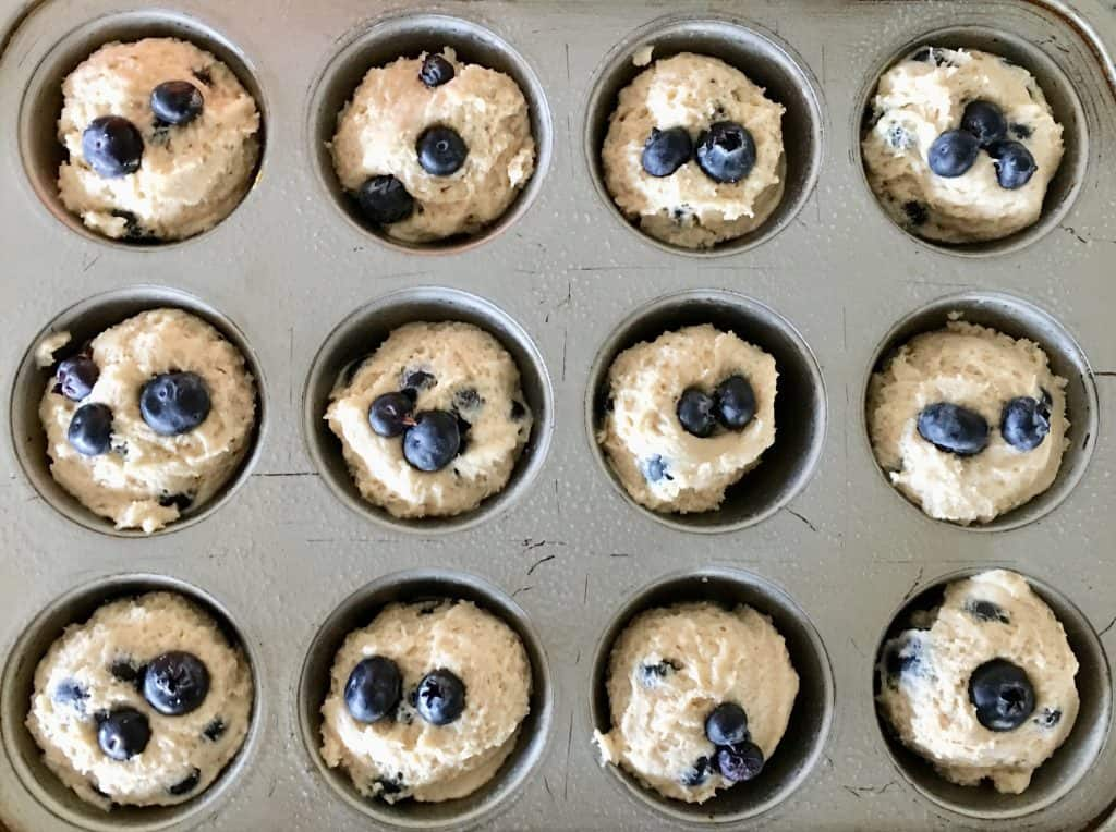 blueberry muffin batter in a muffin tin