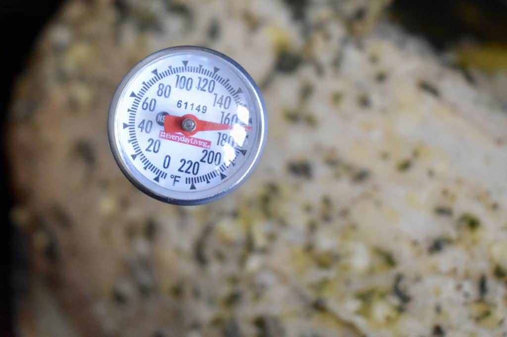 thermometer in slow cooker turkey breast.
