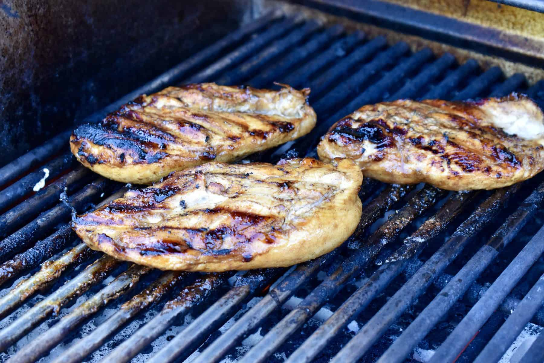 grilled meat on a barbecue.